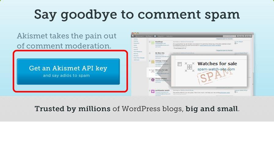 Плагин Akismet используется для борьбы со спамом в комментариях на сайте
