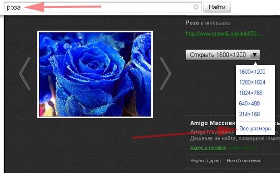 где взять картинки для сайта